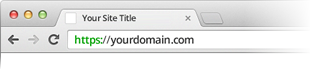 Domain validated SSL